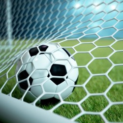 Fußballtornetz 7,50 m x 2,50 m Tiefe 2,00 / 2,00 m